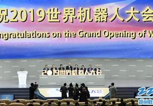 www.xf187.com在世界机器人设计大赛中荣获铜牌